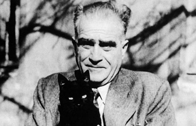 Ahmet Hamdi ve Kedi
